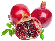 foto_pomegranate_180