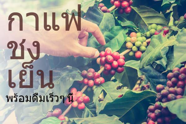 foto_header_smal_coldbrewcoffee_th
